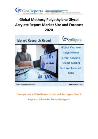 Global Methoxy Polyethylene Glycol Acrylate Report-Market Size and Forecast 2020