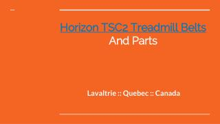 Top Quality Of Horizon TSC2 Treadmill Belts And Parts In Lavaltrie