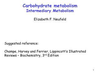Carbohydrate metabolism Intermediary Metabolism