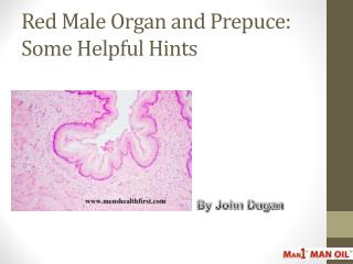 Red Male Organ and Prepuce: Some Helpful Hints