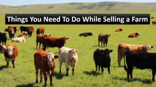 Things You Need To Do While Selling a Farm