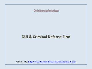Criminal Defense Law Firm Palm Beach
