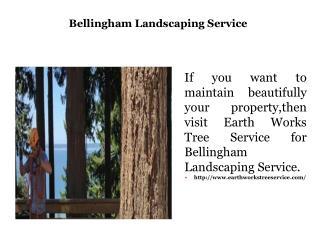 Bellingham Landscaping Service