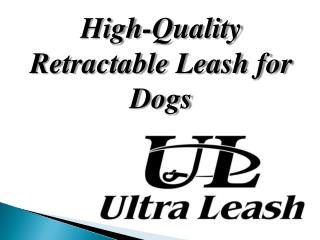 High-Quality Retractable Leash for Dogs