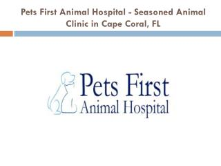 Pets First Animal Hospital - Seasoned Animal Clinic in Cape Coral, FL
