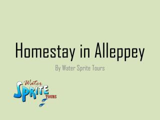 Homestay in Alleppey