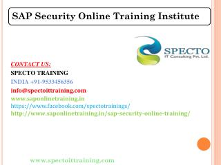 Best Online SAP SECURITY Course Training Institute in India