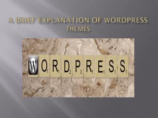 A Brief Explanation Of Wordpress Themes