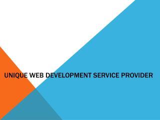 Unique Web Development Service Provider