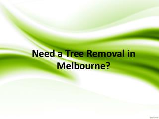Pro Cut Tree Removal Melbourne