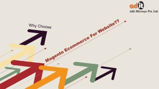 Robust Platform Magento For Ecommerce Website