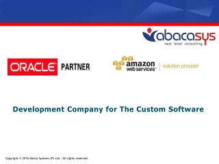 Development Company for The Custom Software