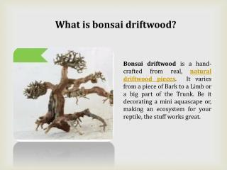 Quintessential driftwood pieces services provider
