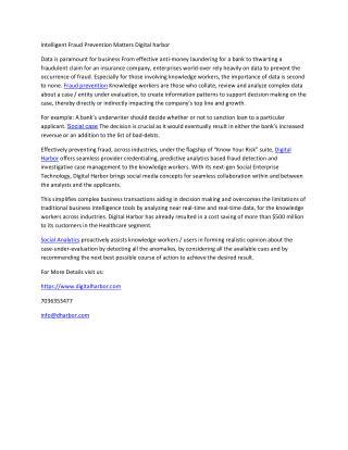 Intelligent Fraud Prevention Matters - Digital Harbor