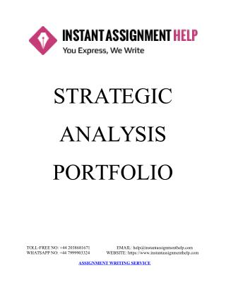 Sample Document on Strategic Analysis Portfolio