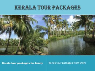 Kerala tour packages for family