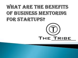 What are the Benefits of Business Mentoring for Startups?