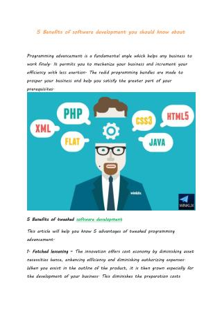 5 Benefits of software development you should know about
