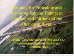 Planning for Protecting and Restoring Salmon Habitat in Channelized Portions of the Okanagan River