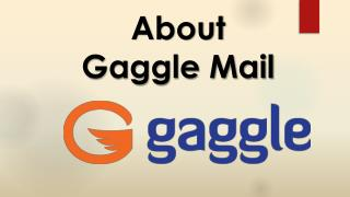 About gaggle mail