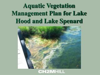 Aquatic Vegetation Management Plan for Lake Hood and Lake Spenard