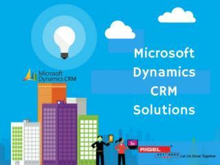 Microsoft Dynamics CRM Solutions
