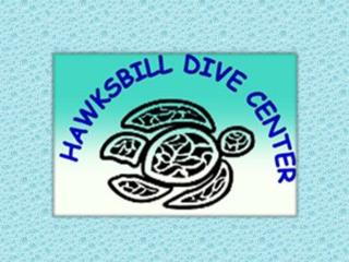 Diving Courses & Lessons Online in Praslin Islands, Seychelles