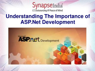 Understanding The Importance of ASP.Net Development