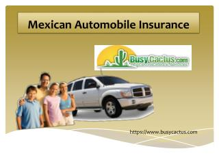 Mexican Automobile Insurance Services