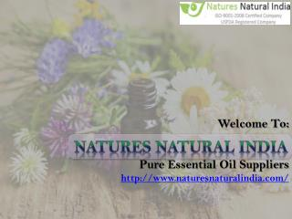 Get Exclusive Collection of Natural Essential Oils from Naturesnaturalindia.com