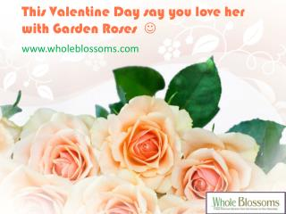 Wholesale Roses For Sale - www.wholeblossoms.com