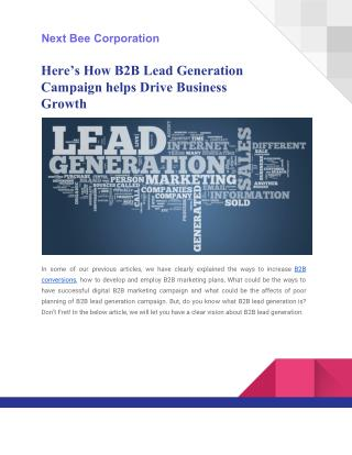 E-Book on B2B Lead Generation Campaign