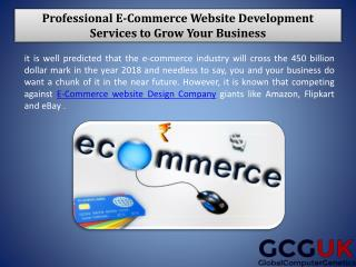 Professional E-Commerce Website Development Services to Grow Your Business