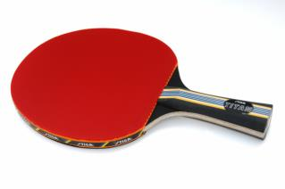 Best Reviews Hunt - Ping Pong Paddle
