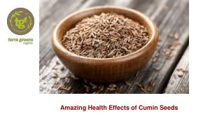 Amazing Health Effects of Cumin Seeds