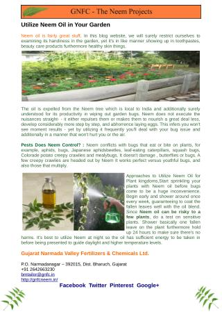 Utilize Neem Oil in Your Garden