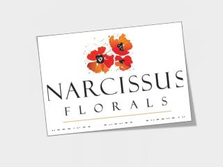 Buy Flowers from our Florist for all Occasions
