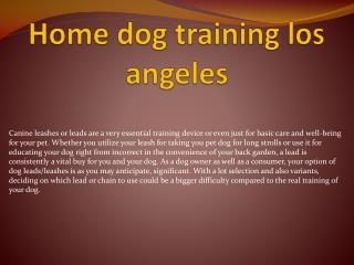 home dog training los angeles