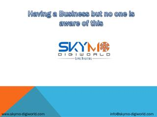 Best SEO Company in Pune, SMO, Internet Marketing |Skymo‏ Digiworld