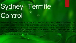 Hire professional termite control corporation.
