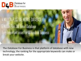 Dubai database for business