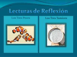 LECTURAS DE REFLEXI