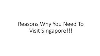 Reasons Why You Need To Visit Singapore!!!