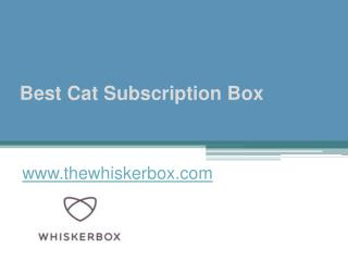 Best Cat Subscription Box - www.thewhiskerbox.com