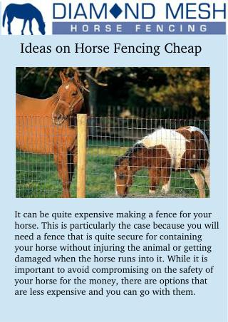 Ideas on horse fencing cheap