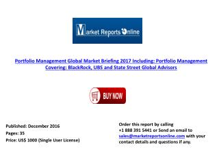 Global Portfolio Management Market Briefing 2017
