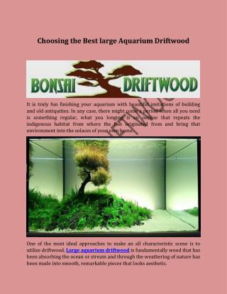 Choosing the Best large Aquarium Driftwood