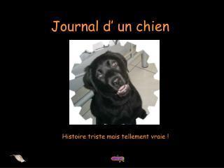 Journal d  un chien
