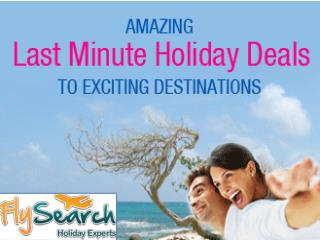 Amazing Last Minute Holiday Deals | FlySearch
