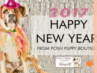 SHOP AMAZING DESIGNER PET ACCESSORIES FROM POSH PUPPY BOUTIQUE